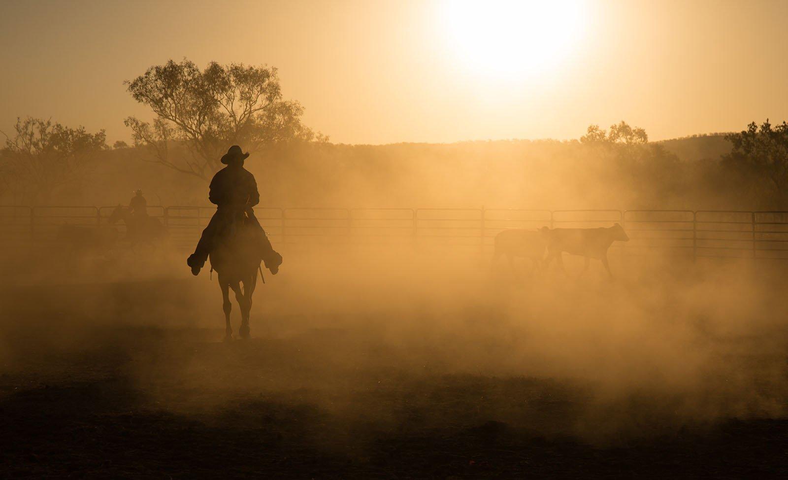 australian-agricultural-tours