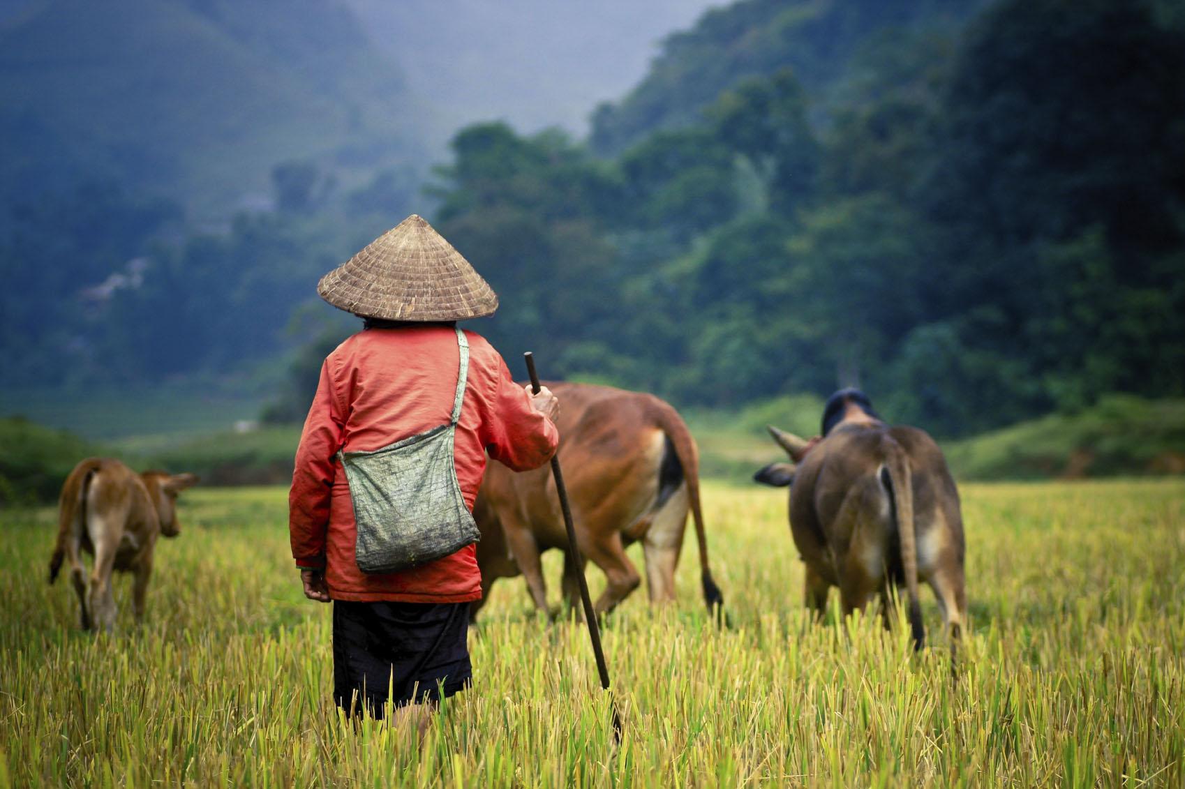 farmers-tour-to-china