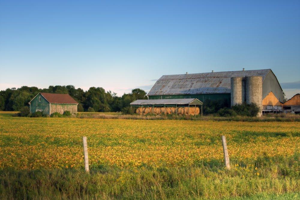 Farm dating sites canada