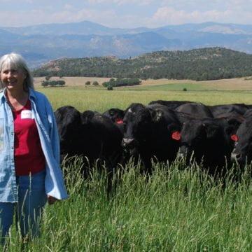 Quadrant Australia USA Beef & Agriculture
