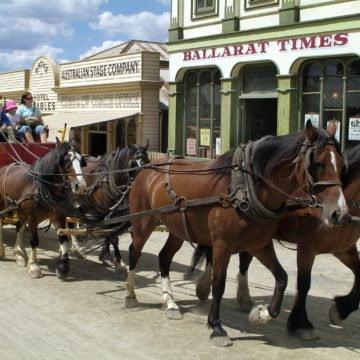 QUADRANT AUSTRALIA Victorian Agricultural Highlights Tour