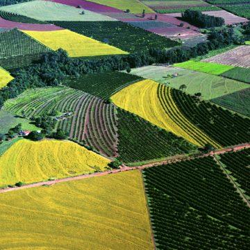 QUADRANT AUSTRALIA AGRICULTURE IN BRAZIL & PARAGUAY