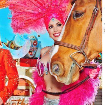 Quadrant Australia Horse Deals Equine Tour USA