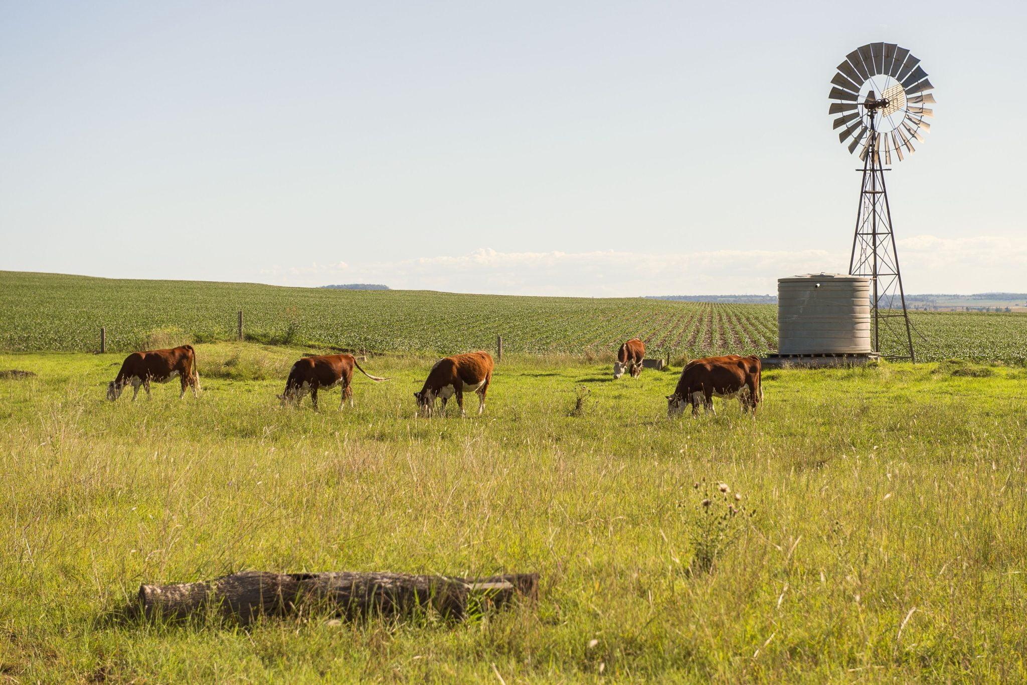 Farmer's Tour to QLD