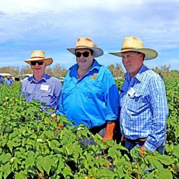 Quadrant Australia Northern Food Futures Tours-1